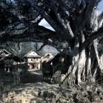 106a - Makalu, Strom na cestě do základního tábora (60x40)