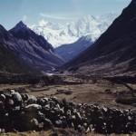 36 - Manaslu, Hřeben Himaláje (50x60)